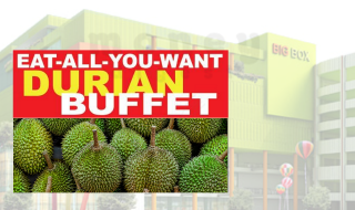 Big Box Durian Buffet 2