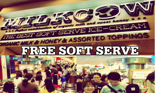 Milkcow Free Soft Serve