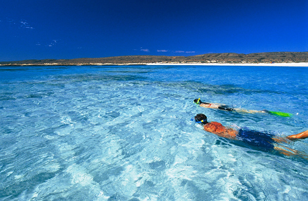 ningaloo-reef-wa-snorkelling