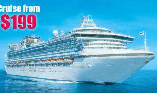 Cruise 199