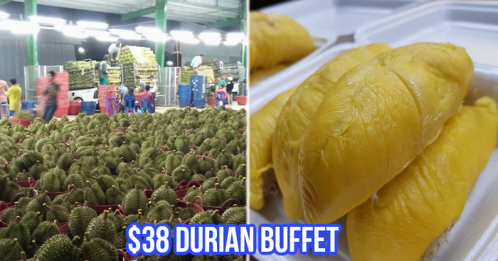 This stall in Bedok offers all-you-can-eat MSW durian buffet from
