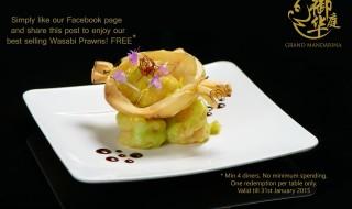 Grand Mandarina Promotion 060115