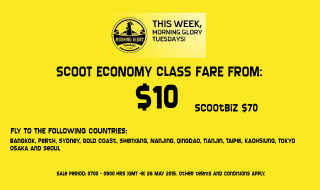 Scoot Morning Glory Tuesday 260515
