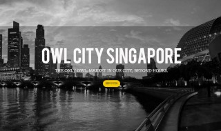 owl city singapore featured