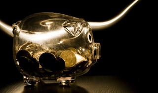Moneys inside a pig