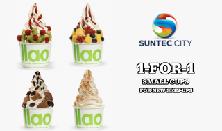 llaollao Suntec City Small Cup