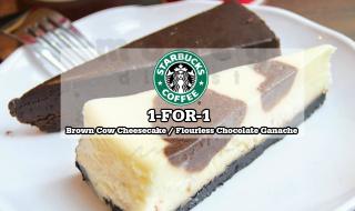 Starbucks 1for1 Brown Cow CheesecakeStarbucks 1for1 Brown Cow Cheesecake