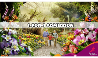Gardens by the Bay 1 for 1