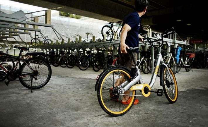 Man with an oBike