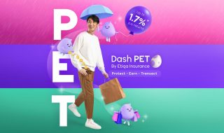 Dash PET cover image